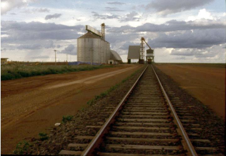 First grain terminal built on Ferronorte Railroad in Mato Grosso