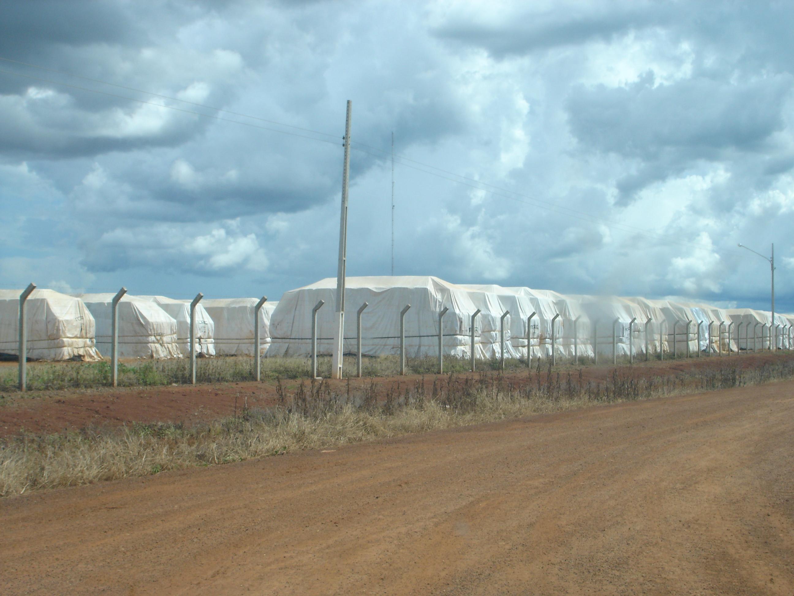 Cotton awaiting shipment on Ferronorte Railroad in Mato Grosso